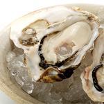 国内産殻付き生牡蠣10粒(8〜10cm程度)