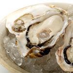 国内産殻付き生牡蠣50粒(8〜10cm程度)<生冷凍>